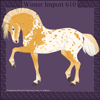 Winter Import 610 by ThatDenver