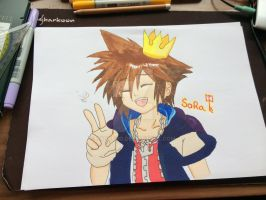 Sora by Catkuro