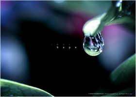 Water Drop 7: Last Hope by reubenteo
