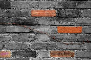 Brick Detail by tpphotography