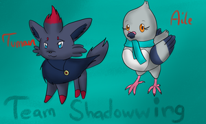 Team Shadowwing:Tuman and Aile by AmieAdot