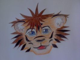 Sora Tiger - headshot by Jakerei