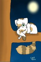 Beepaw and the Moon. -READ DISCRIPTION- by dixiestickz