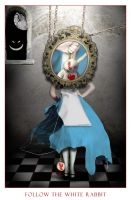 F ollow the white rabbit by -sylph-