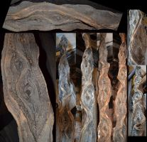 STOCK - Cool Gnarled Log 1 by jocarra