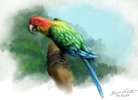 Parrot - Collab by Lypes