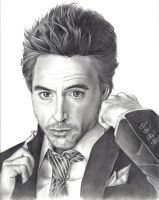 Robert Downey Jr Portrait by birdiebo