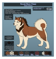 Ref-Sheet: Shero by Sachishiro