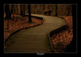 The Trail by AlienShore