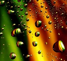 Drops of water 1 by AnInsect