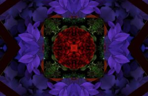 collissionscope of flowerS by starmanjb