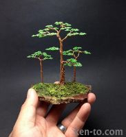 Flat top wire bonsai tree sculpture by Ken To by KenToArt