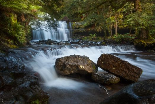 Liffey Falls by CapturingTheNight