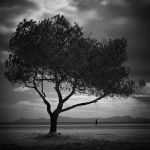 Mallorcan Impression 04 by HorstSchmier