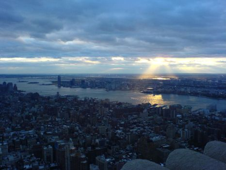 View from Empire State by Nuvalari