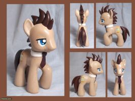 Dr. Whooves Custom Toy by CadmiumCrab