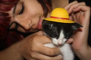 Cat. D. Luffy and me by aita92