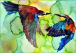 Merops apiaster by Verenique