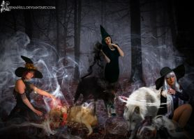 Witches and Their Wolves by LeenaHill