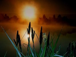 The spring sunrise 2 by mutrus