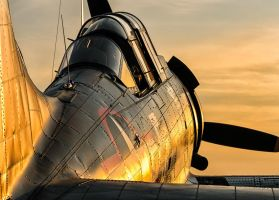 Dauntless at Dusk by aviationbuff