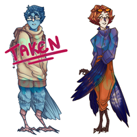 Harpy Adopts 1- [CLOSED] by PW-adoptables