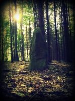 the mysterious stony stature by czmartin