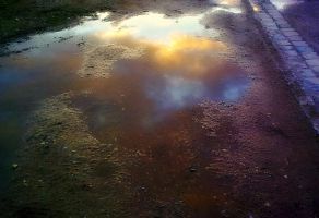 puddle by Mittelfranke