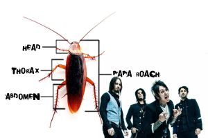 Papa Roach wallpaper by Zenfiro
