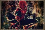 The Amazing Spider-Man Signature (made it myself) by BleachOD
