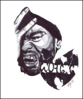 Method Man - Wu Tang Clan by raj1v