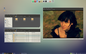 "Linux Mint Screenshot ""Take 3"" by vanessabanessa89"