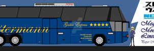 Perrine Clostermann's N118/3 Cityliner Special by MegaMoonLiner