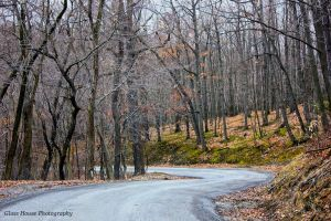Evans City Cemetery Road by GlassHouse-1