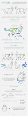 Teacat Species Guide by Gato-Iberico