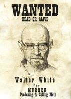 Walter White is Breaking Bad by rayray892000