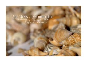 Sea Shells are Summertime by SofiaERamirez