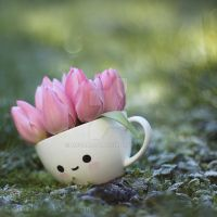 Cup with spring by lieveheersbeestje