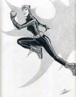Catwoman by spidershag