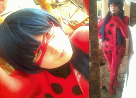 PREVIEW - Ladybug by Aerblade
