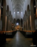 Cathedral in Turku by mityrose