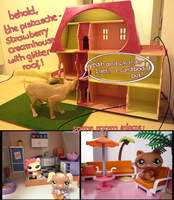 Lps Dollshouse by theCPdiary