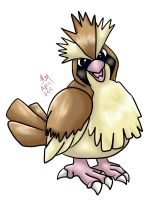 Pidgey by Animal-and-anime-lvr
