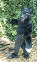 Black wolf halfsuit by LilleahWest