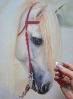 WIP 4 White Horse 2 by PASTELIZATOR