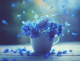 Air dancers by arefin03