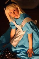 Alice in wonderland by LauzLanille