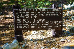 walden pond thoreau by ChasMandala