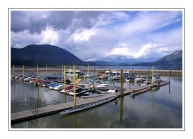Marina at Salmon Arm by dove-51