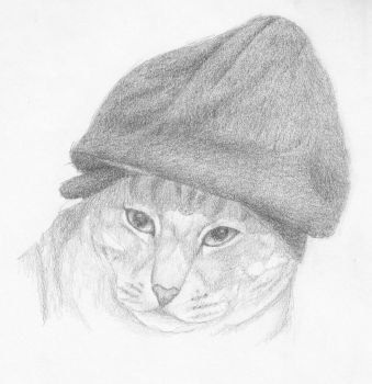 Puss and Beanie by Morowyn